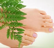 Ormus Rich Aloe Vera Foot Cream with Organic Peppermint