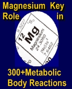 Magnesium key role