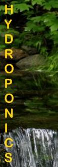 Ormus Minerals Hydroponics
