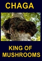 Ormus Minerals Ormus Rich Mushrooms Chaga KING of Mushrooms